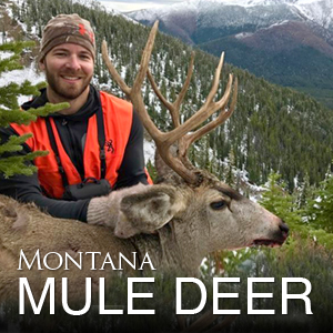 Montana Elk Hunting Outfitter & Guide - K Lazy 3 Outfitters